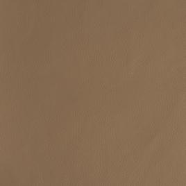 Кожа искусственная арт. TY 1341 бежевый TY1796