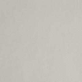Кожа искусственная арт. TY 1341  белый (TY1883)