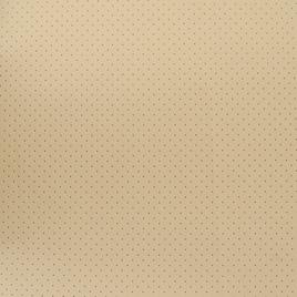 Кожа искусственная арт. TY 427 светло-беж. TY2209