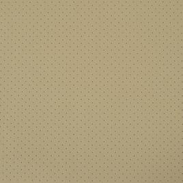 Кожа искусственная арт. ZR30772ED светло-бежевый